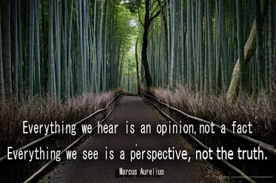 everything-we-hear-is-an-opinion-not-a-fact-everything-we-see-is-a-perspective-not-the-truth-20