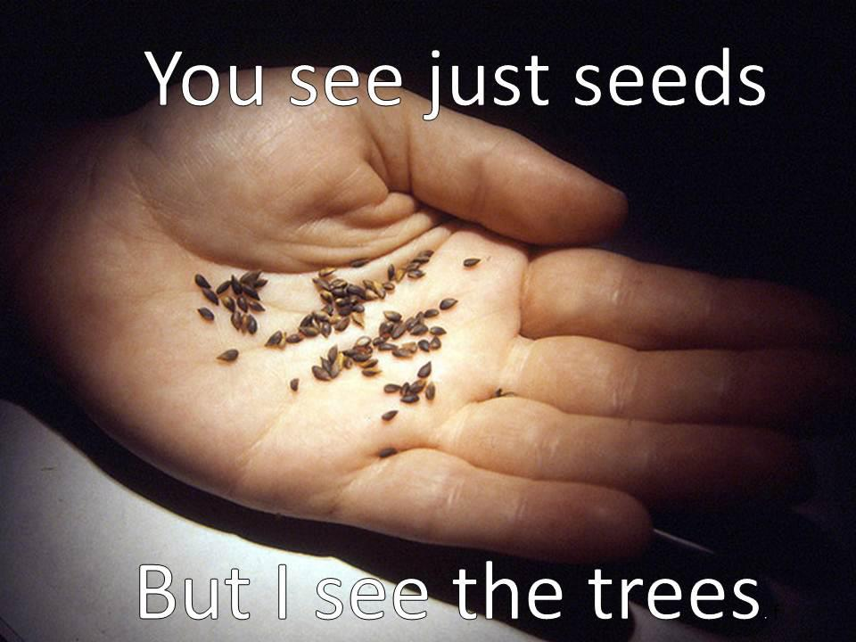 You-See-Seeds-but-I-See-the-Trees.jpg