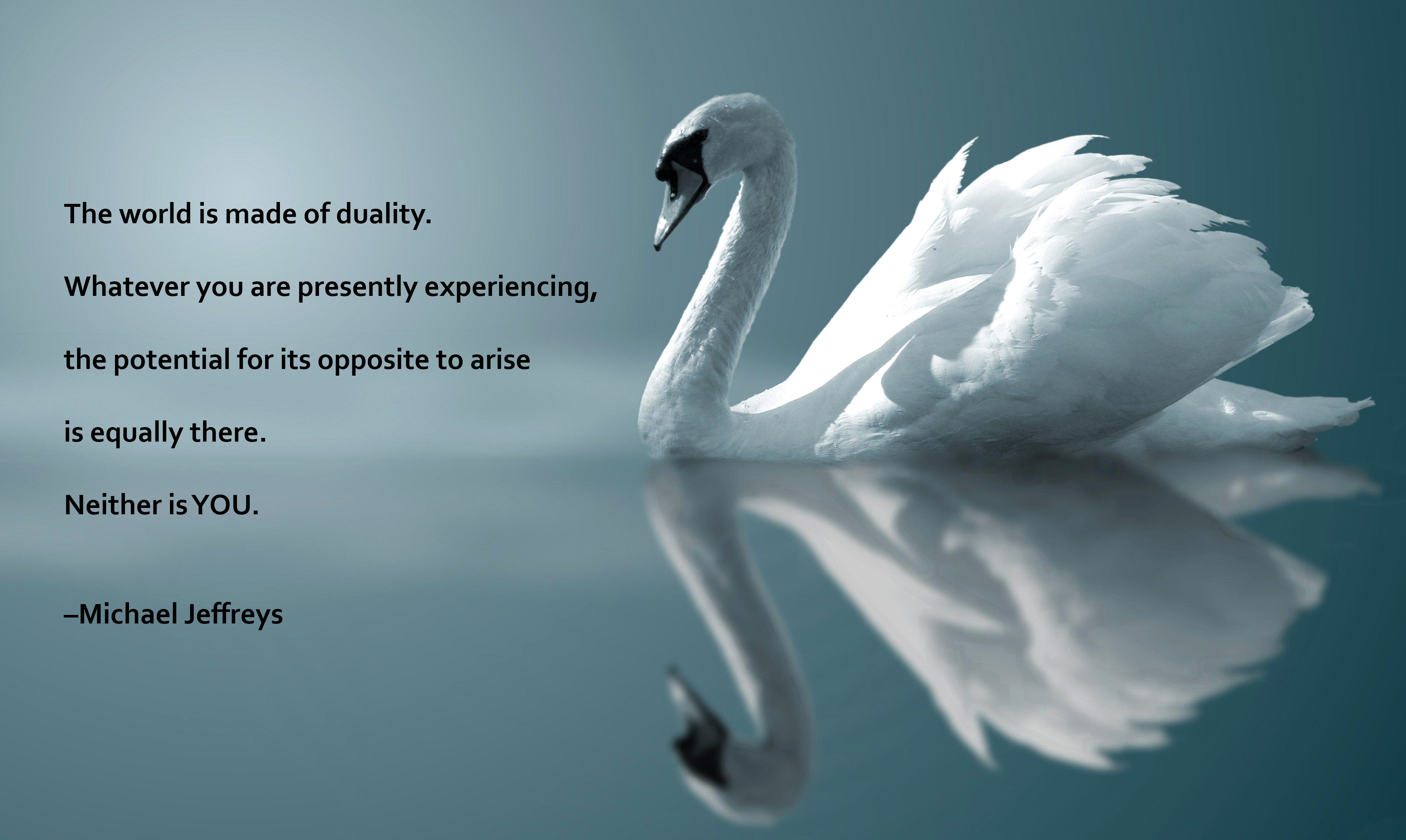 mj-quote-swan-reflection.jpg
