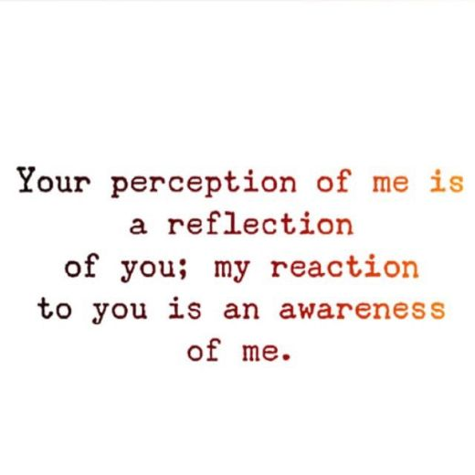 dfd8907c3c473631b76e86ad9a45a84a--perception-quotes-your-perception-of-me.jpg