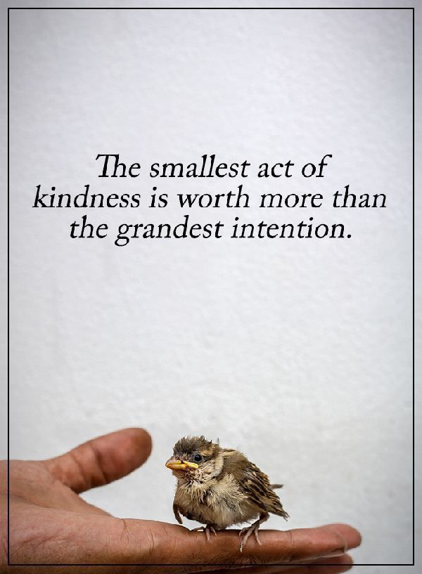 kindness-quotes-Why-Kindness-Worth-more-than-Grandest-Intention.jpg