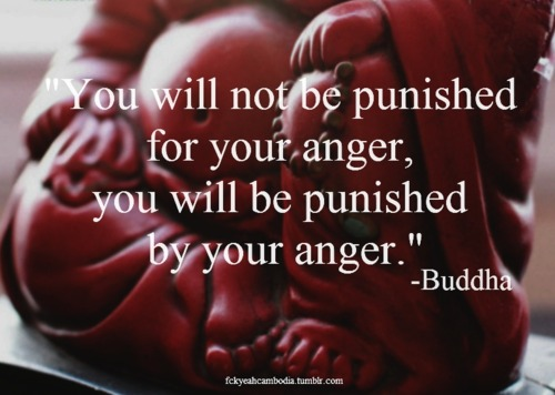 910486-You-will-not-be-punished-for-your-anger.jpg