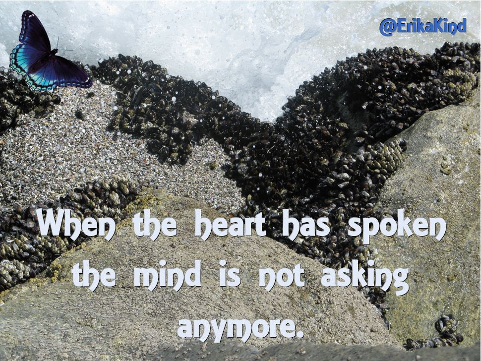 When the heart speaks the mind is silenced.JPG