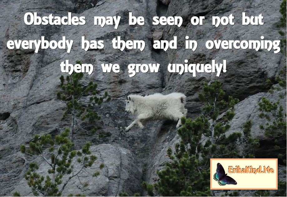 Obstacles make us grow uniquely.JPG