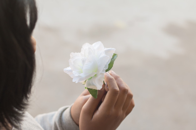 white-rose-flower-hands-young-girl_3249-4082.jpg