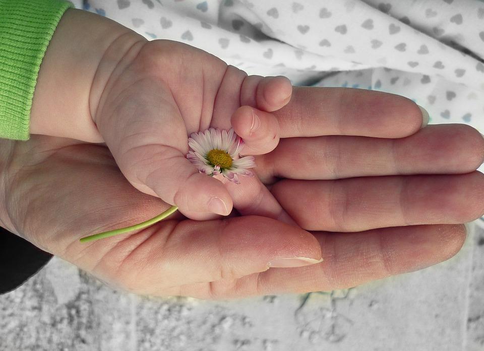 hands-105455_960_720.jpg