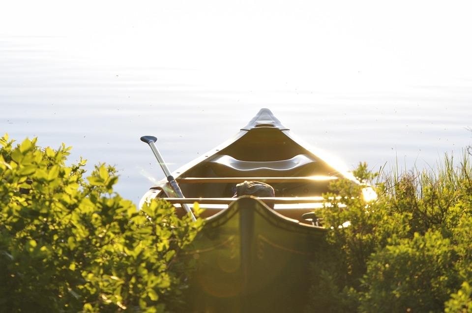 row-boat-381223_960_720.jpg
