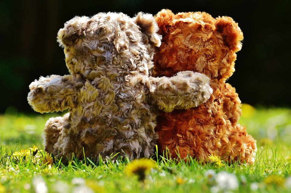 teddy-1361397_960_720.jpg