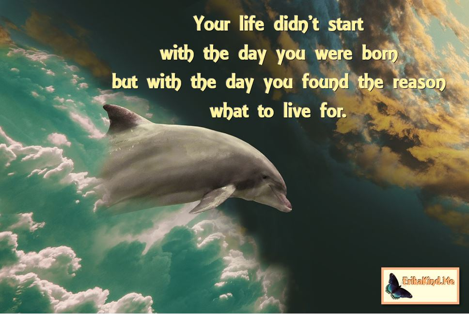 You live for what you live.JPG
