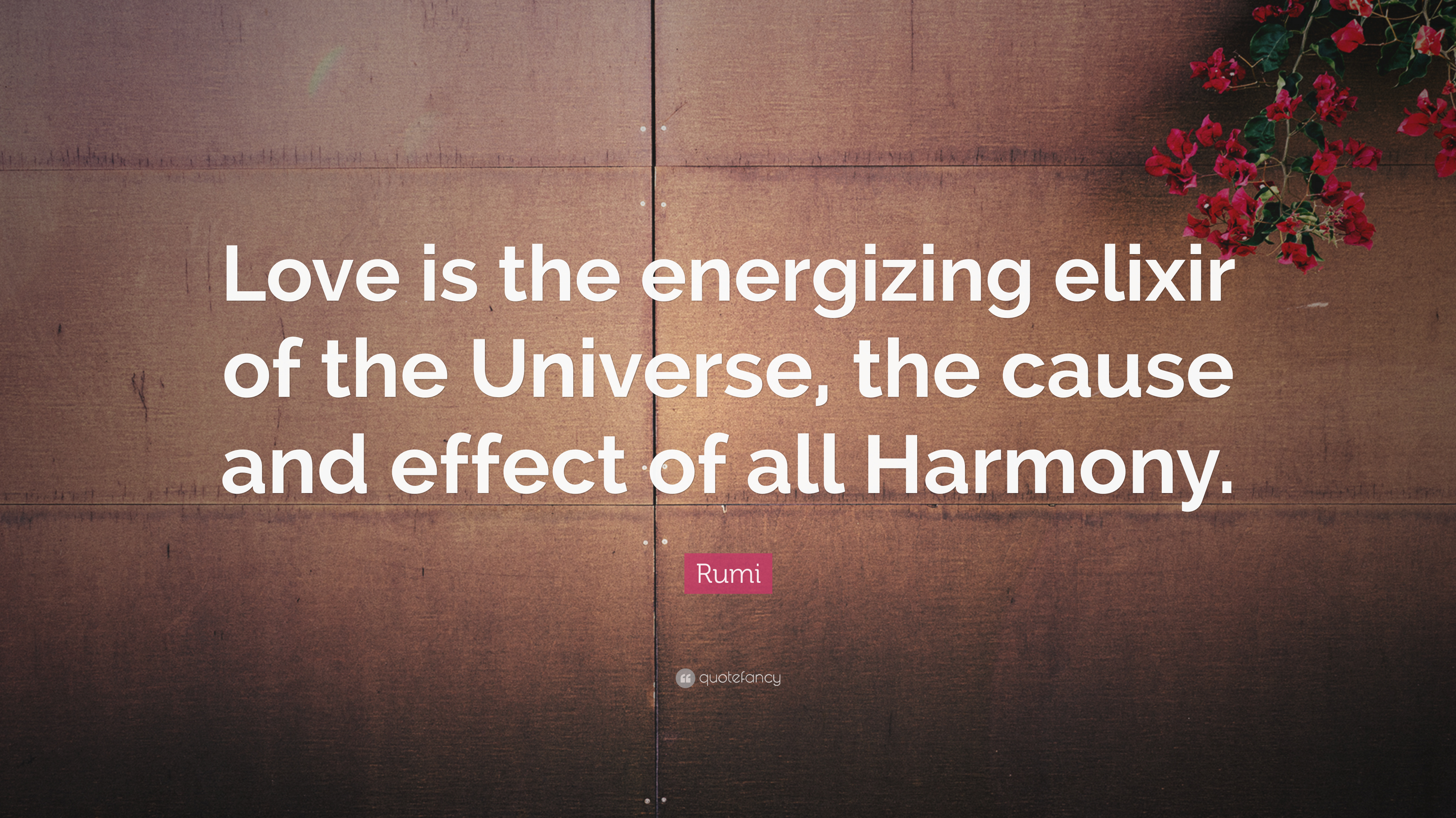 2055621-Rumi-Quote-Love-is-the-energizing-elixir-of-the-Universe-the-cause.jpg