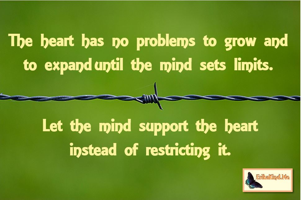 Let the mind support the heart.JPG