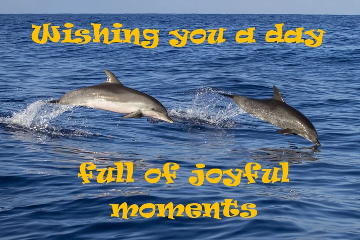 #MomentsOfJoy